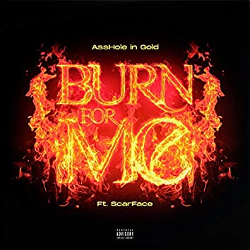 Burn For Me (feat. Scarface)