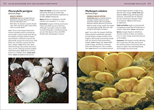 Mushrooms of the Northeastern United States and Eastern Canada (Timber Press Field Guide)