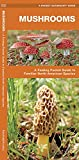 Mushrooms: A Folding Pocket Guide to Familiar North American Species (Wildlife and Nature Identification)