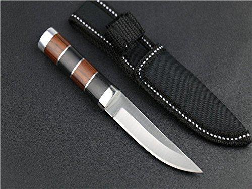 FARDEER KNIFESA18 excelente Cuchillo de Caza al Aire Libre