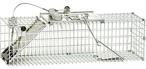 Havahart Easy Set Small 1-Door Animal Trap for Rats and Small Squirrels - 1082-Made in the USA