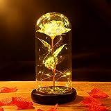 Minterest Rosa Bella y Bestia,Rosa Eterna con luz LED y Tarjeta,Regalos para San Valentin,Cumpleaños,Boda,Aniversario,Madres