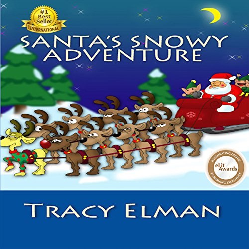Santa's Snowy Adventure audiobook cover art