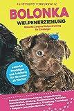 Bolonka Welpenerziehung: Bolonka Zwetna Welpentraining für Einsteiger, Eingewöhnung, Bindung, Stubenreinheit, Erziehung und Futter