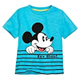 Disney Mickey Mouse Summer Fun T-Shirt for Boys, Size L (10/12)