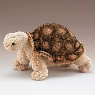Wildlife Artists Tortoise 10