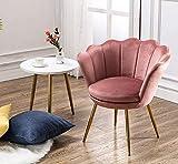 Wahson Sessel für Schlafzimmer Weicher Samt Armlehnstuhl mit Vergoldeten Metallbeinen,Freizeitsessel für Wohnzimmer/Vanity (Rose)