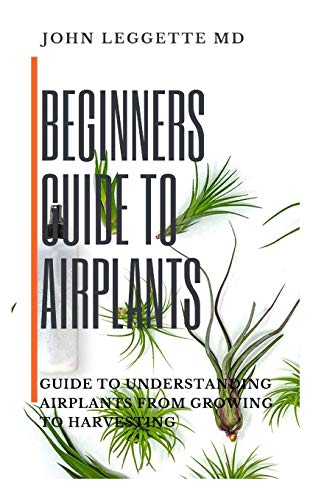 BEGINNERS GUIDE TO AIR PLANTS: Guide to understanding air plants from growing to harvesting