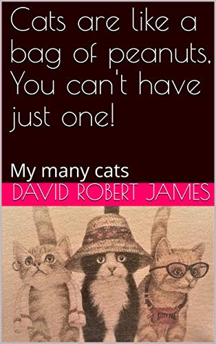 Cats are like a bag of peanuts, You can't have just one!: My many cats (David Robert James Book 2) (English Edition)