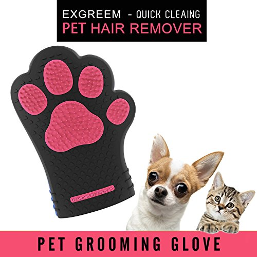 Exgreem Hair Remover and Bathing Glove