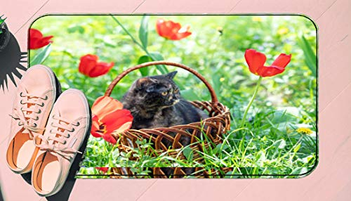 DIIRCYB Fu?matte Indoor Outdoor Rutschfeste waschbare Fu?matte,Beautiful Little Tortoiseshell Kitten Sits In A Basket Near Tulips In A Spring Garden,Diy Cropping Teppich,For Home Kitchen Bedroom Bathr