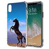 blitzversand Handyhülle Sunset Horse kompatibel für Samsung Galaxy S6 Aufbäumen Pferd Hinter Hufen Schutz Hülle Case Bumper transparent M6
