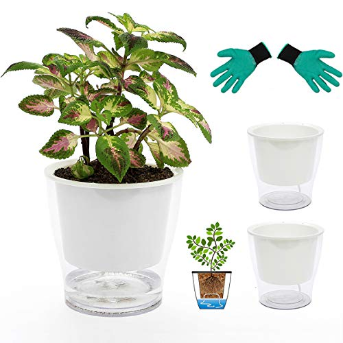 DeEFL 3 Packs 7 Inches Clear Self Watering Planters Large Plastic Self Watering Pots Wick Flower Pots for Indoor Plants, African Violet, Ocean Spider Plant, Orchid, Clear and White