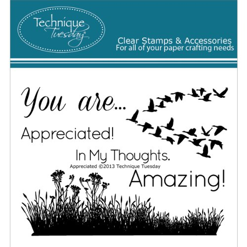 Appreciated Clear Stamps | Clear Rubber Stamps | Photopolymer Stamps | Card Making Supplies