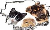 DesFoli Hund Katze Hamster 3D Look Wandtattoo 70 x 115 cm Wanddurchbruch Wandbild Sticker Aufkleber C125
