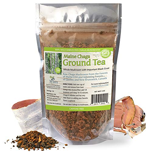 Maine Chaga Ground Tea Powder, Coarse Ground Raw Wild Harvested, Pesticide-Free, with Important Black Crust, 100 Servings
