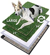 MEEXPAWS Large Dog Artificial Grass Litter Box Toilet with Tray   34×23 inches 2 Sturdy Grass Replacement Set  Rapid Drainage  2 Pee Pads   Potty Training for Indoor use