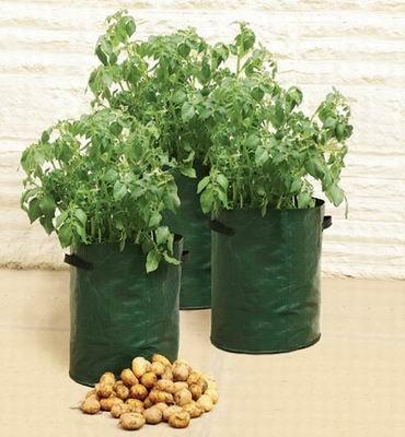 Kartoffel-Pflanz-Taschen, 3er Set