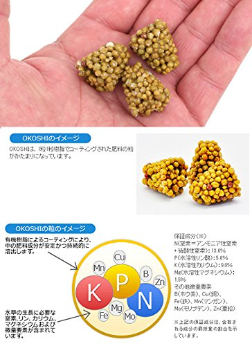 カミハタ『水草専用肥料OKOSHI』