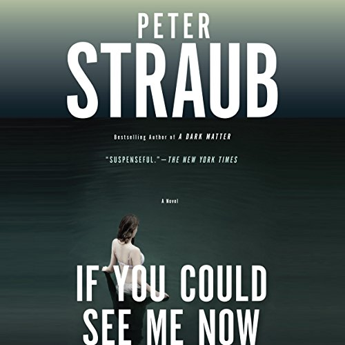 If You Could See Me Now audiobook cover art