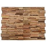 vidaXL 10x Paneles Revestimiento de Paredes 1 m² Madera Teca Reciclada Natural