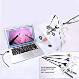 XMQW Laparoscópica Cirugía Formación Caja de Entrenamiento de simulador, 4 Quirúrgico Instrumentos -con cámara USB de inserción HD con 5 módulos de Entrenamiento