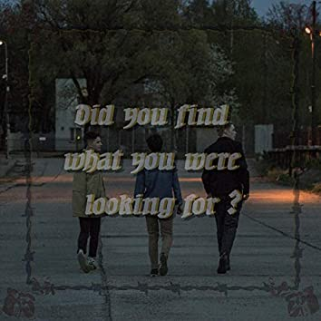 Did You Find What You Were Looking For?