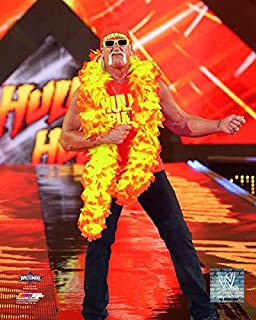hulk hogan wrestlemania 30