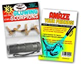 Edible Insects Glow in The Dark Edible Scorpion Kit with UV Flashlight