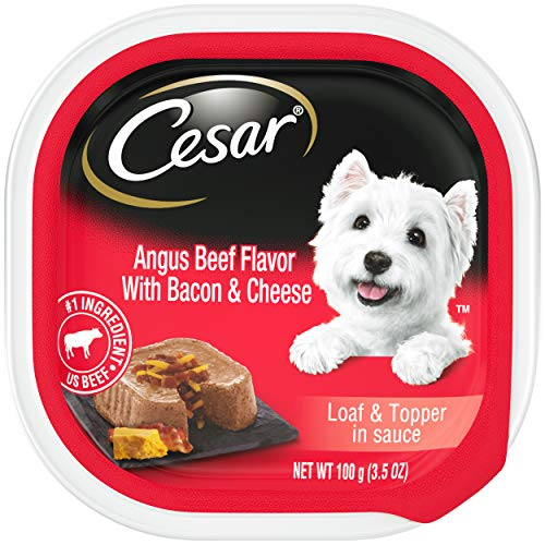 CESAR Soft Wet Dog Food Loaf & Topper in Sauce Angus Beef Flavor with Bacon & Cheese, (24) 3.5 oz. Easy Peel Trays