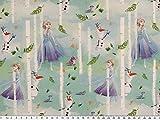 ab 1m: Baumwoll-Popeline, Eiskönigin-5, Digitaldruck, hellblau breit