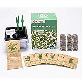 KORAM Kit de jardín de hierbas cultivo Set de iniciación de jardinería 10 hierbas Kit de hierbas para interior de semillas orgánicas Jardinero para cultivar hierbas cocina alféizar de la ventana