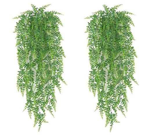 YYaaloa 2-Pack 80cm Boston Fern Artificial Plants Fake Hanging Plant Fake Leaves Greeny Chain Wall Home Room Garden Wedding Garland Outside Decoration (2-Pack Boston Fern)