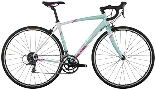 Raleigh Bikes Revere 1 Women's Endurance Road Bike, 48 cm/XX-Small, Light Blue