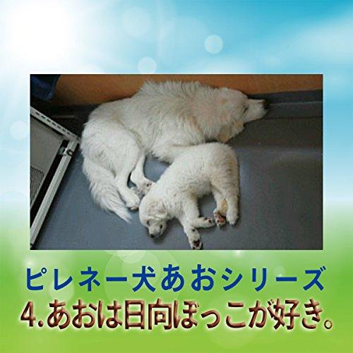 『ピレネー犬あおシリーズ 04.日向ぼっこが好き。』のカバーアート