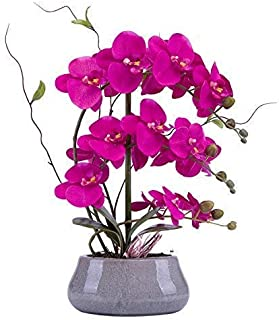 Lifelike Large Flower Arrangement with Decorative Vase Full Artificial Orchid Plant with Real Looking Table Centerpiece(Gray-vase, Purple Red)