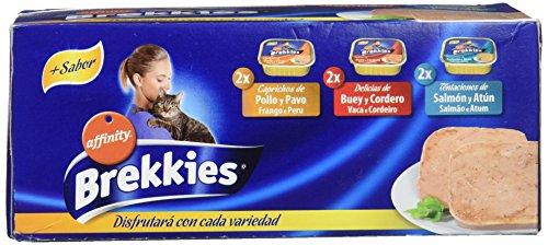 Brekkies Comida Húmeda para Gato con 3 Variedades de Sabores - Paquete de 5 x 600 gr - Total: 3000 gr