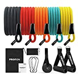 PROIRON Resistance Bands Set 14 Pieces Anti-Snap Resistance Band Exercise with Handles, Door Anchor, Ankle Straps, Training Manual and Carrying Bag by Shanxi Regent Works Inc.