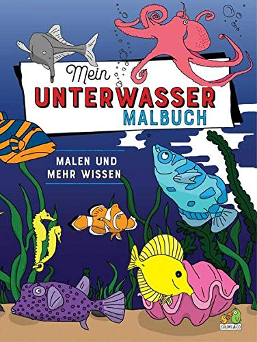 Mein Unterwasser Malbuch: Malen und mehr wissen!