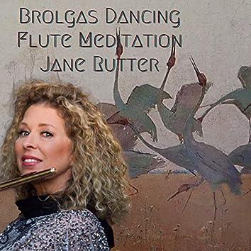 Brolgas Dancing Flute Meditation