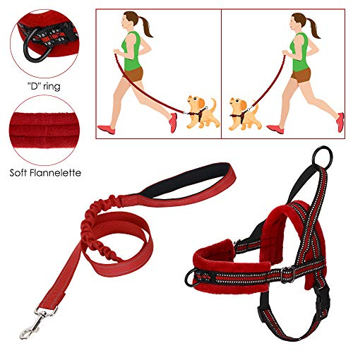 Slowton No Pull small Hundegeschirr und Leine, Front Lead Walk Vest Harness Weich gepolstertes, reflektierendes, verstellbares Welpengeschirr Anti-Twist 4FT Pet Lead Quick Fit für kleine Hunde