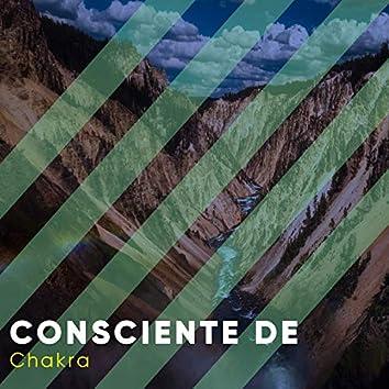 # Consciente de Chakra