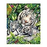 Kit de pintura de diamante 5D para adultos y niños, diseño de tigre blanco con diamantes de imitación para bordar por números, para decoración de pared (color : tigre blanco, tamaño: 60 x 70 cm)