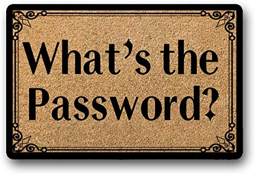 Yolocal - Felpudo con Texto en inglés «What The Password», 45 x 75 cm