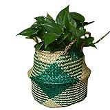 Szetosy - Cesta de junco marino natural tejida a mano, con asa, para almacenar juguetes, ropa sucia o como maceta, Estilo#4, 22CMx20CM