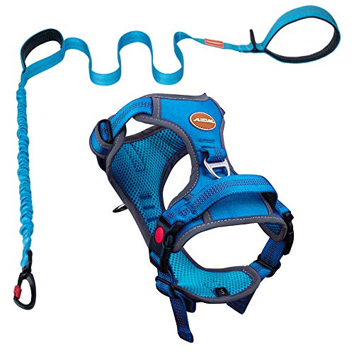 AdventureMore Dog Harness Leash Set, No-Pull Dog Harness, Front Clip Dog Harness, Reflective Dog Vest, with 5 ft Dual Handle Dog Leash, Padded Handles Bungee Training Dog Leash XXL Blue
