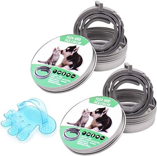 2 Pack Collar Antiparasitos Perros Gatos Collares Antipulgas GVOO Tamaño Ajustable e Impermeable para Mascota Grandes Extractos de Plantas de Aceites Esenciales