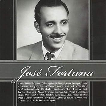 José Fortuna - 20 Anos de Saudade, Vol. 2