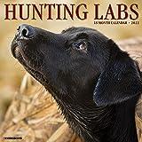 Hunting Labs 2022 Wall Calendar, (Labrador Retriever Dogs, Dog Breed)