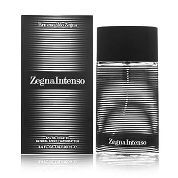 Ermenegildo Zegna Intenso Eau De Toilette Spray for Men 3.4 Ounce